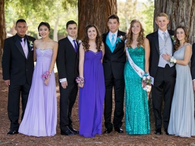 Promm Cropped